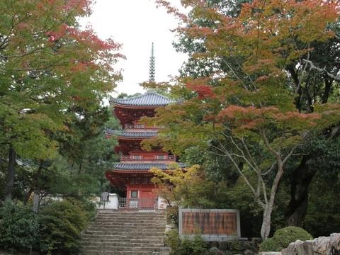宝福寺・三重塔