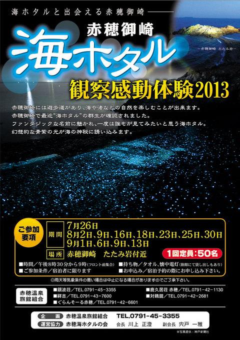 海ホタル観察感動体験2013