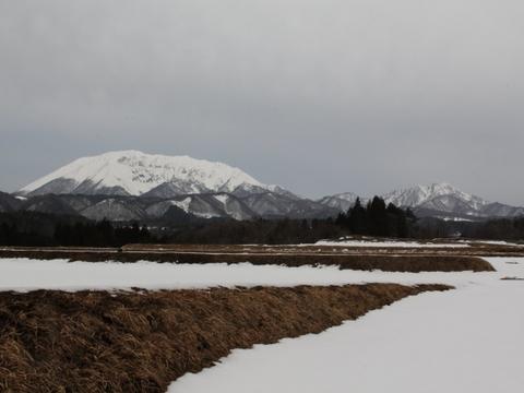 貝田からの大山