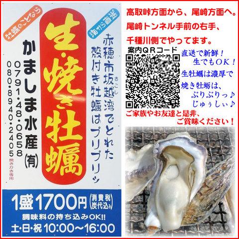 生・焼き牡蠣食べれます♪