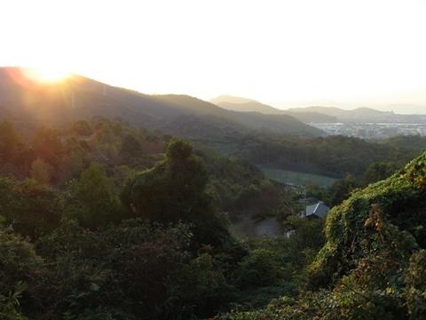 早朝風景3