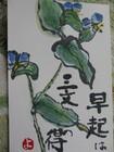 つゆ草2 (450x600)