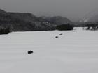 雪に埋れた小屋