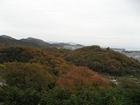 早朝風景7