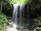 正面から見る滝