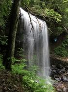 左側から見る滝